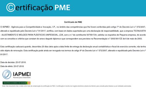 PME Líder 2017-pt-en